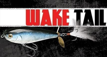 paseante Wake Tail 85, Spainsh Alburno de Lucky Craft